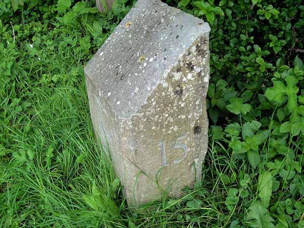 Stone 15