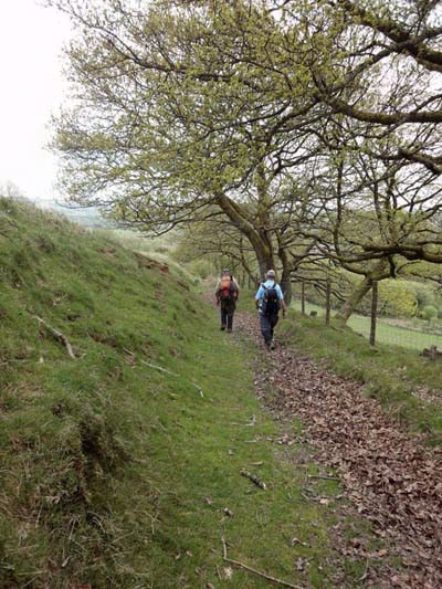 Photograph of Walking Route - Image 13