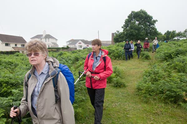 Photograph of Walking Route - Image 41