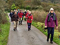 AGM Long walk