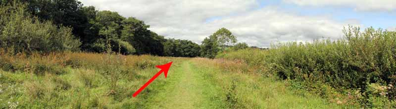 Photograph of Walking Route - Image 15