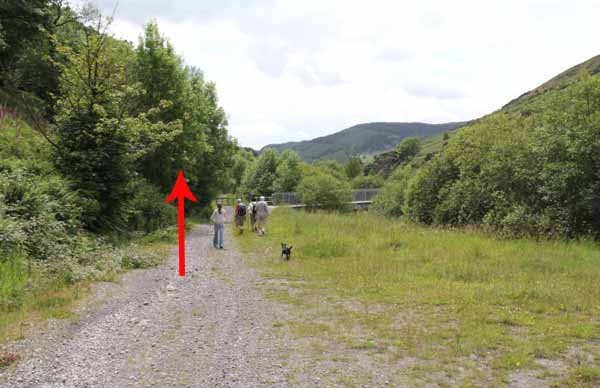 Photograph of Walking Route - Image 52