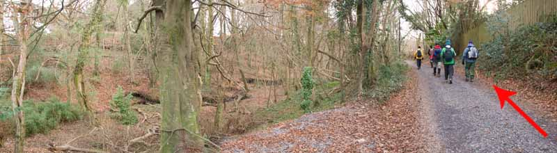 Photograph of Walking Route - Image 61