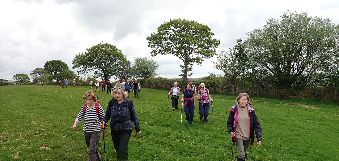Image of Swansea Ramblers walking in the countryside