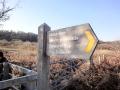 Oxwich Marsh