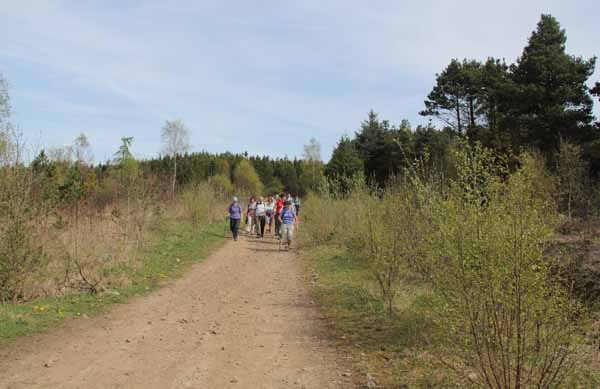 Photograph of Walking Route - Image 58
