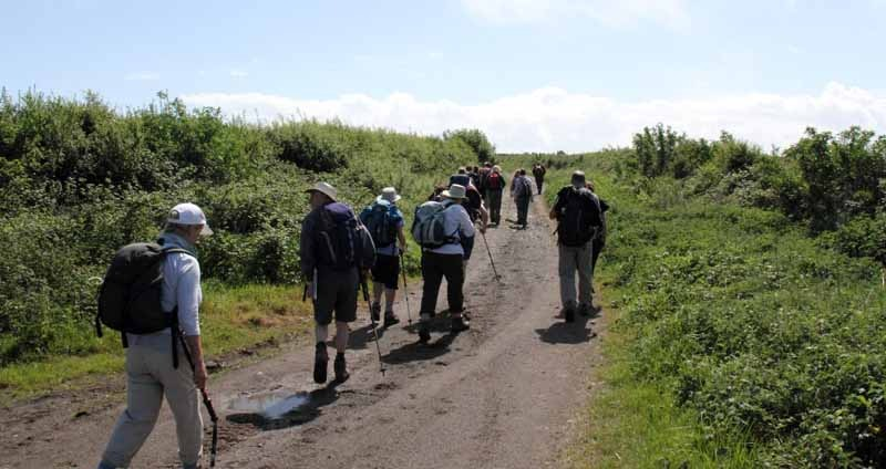 Photograph of Walking Route - Image 16