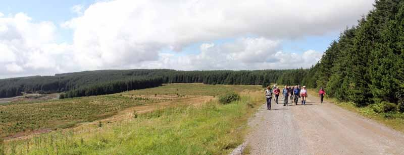Photograph of Walking Route - Image 42