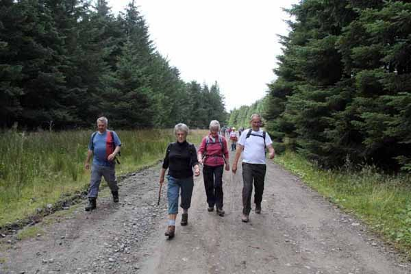 Photograph of Walking Route - Image 43