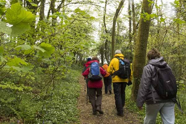 Photograph of Walking Route - Image 36
