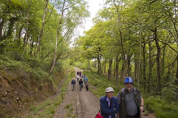 Photograph of Walking Route - Image 10