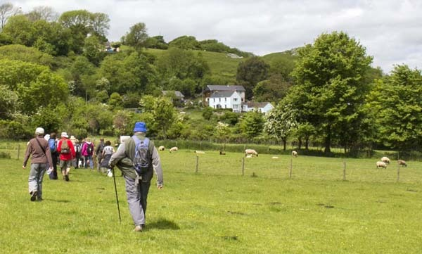 Photograph of Walking Route - Image 23