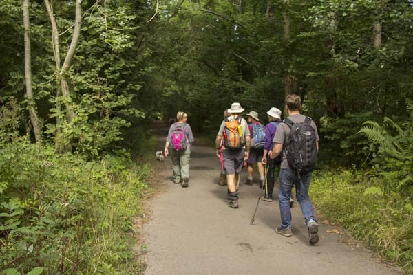 Photograph of Walking Route - Image 9