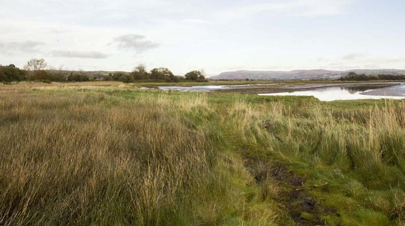 Photograph of Walking Route - Image 45