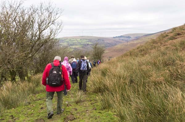 Photograph of Walking Route - Image 5