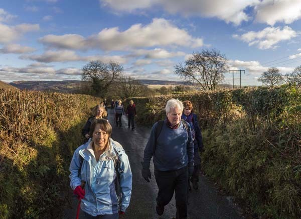 Photograph of Walking Route - Image 50