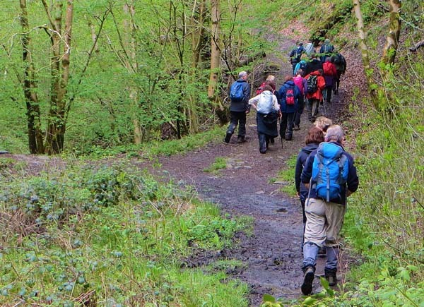 Photograph of Walking Route - Image 47