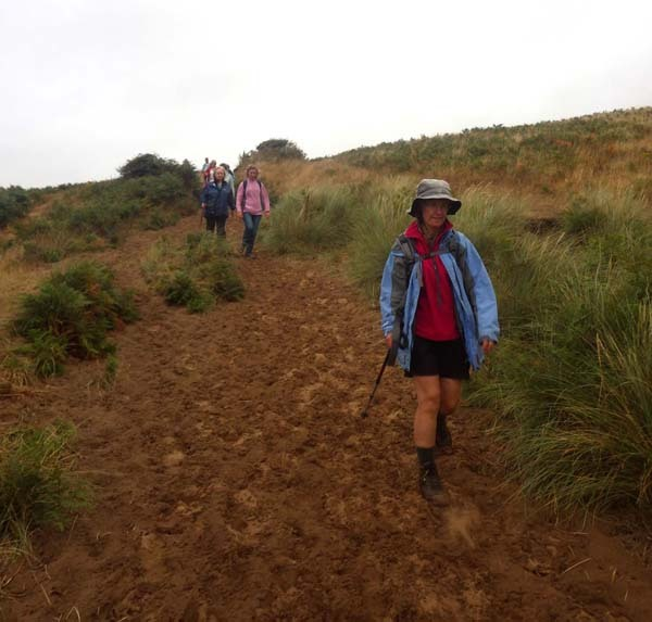 Photograph of Walking Route - Image 12