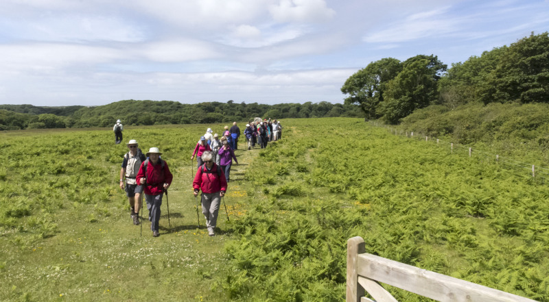 Photograph of Walking Route - Image 39