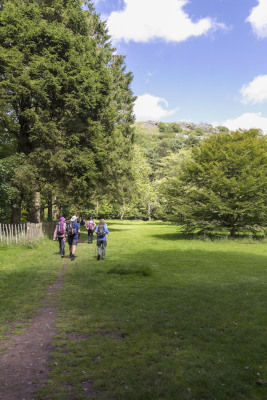 Photograph of Walking Route - Image 64
