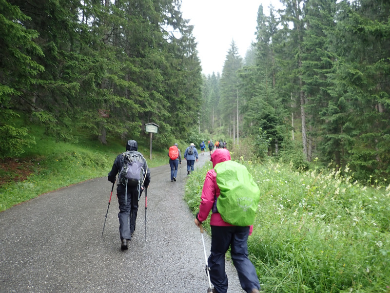 Photograph of Walking Route - Image 11