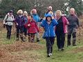 Clyne Common walk